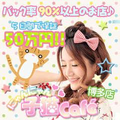 北九州の風俗求人デリヘル子猫カフェ