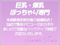 ぽっちゃりさん・巨乳・爆乳さん大募集中!!