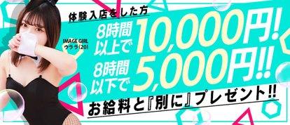 バニーコレクション秋田店