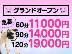 お給料<br /><br />60分→11000円<br />90分→14000円<br />120分→19000円<br /><br />頑張りに応じて<br />給料UPです!!