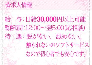.日給3万円以上も可能!<br />