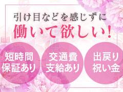 日給50000円保証!月給1000000円超も夢じゃない!期間限定オープニングキャンペーン実施中!!