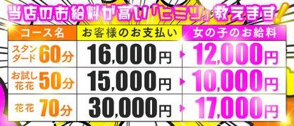 花つばき~蕾~
