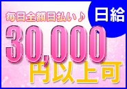 日給3万円以上可能!!