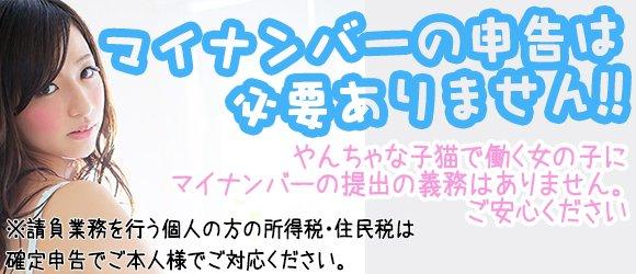 やんちゃな子猫日本橋2号店