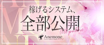 Anemone 渋谷店