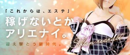 紫苑 -shion-